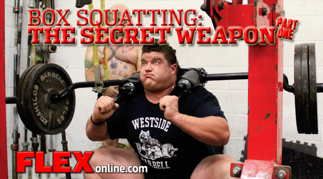 Building Explosive Strength With Box Squats