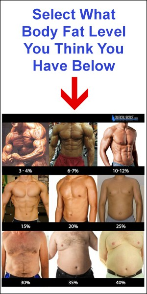 what body fat you have