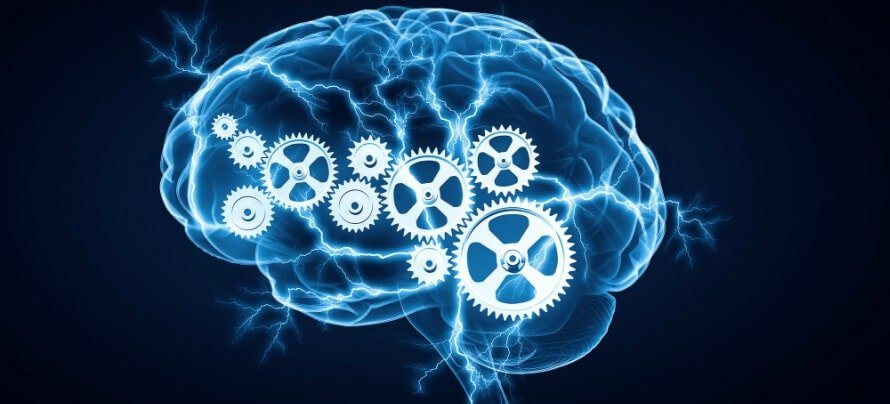 The 7 Types of Nootropics You Should Know